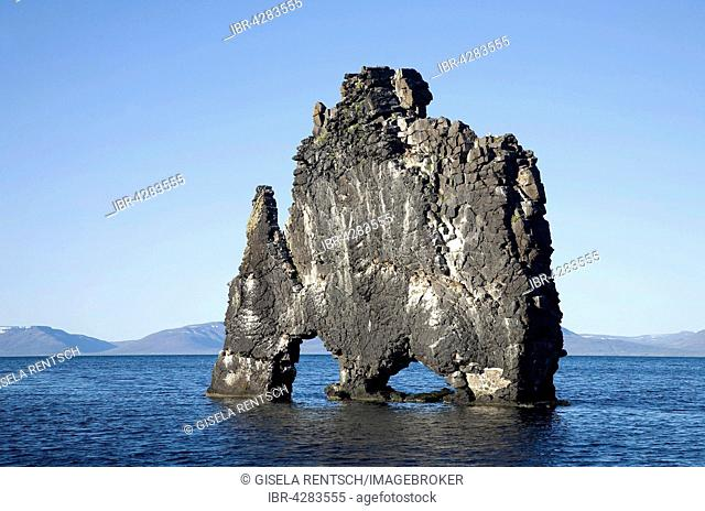 Hvitserkur, striking basalt rocks in sea, east coast of Vatsnes peninsula, Iceland