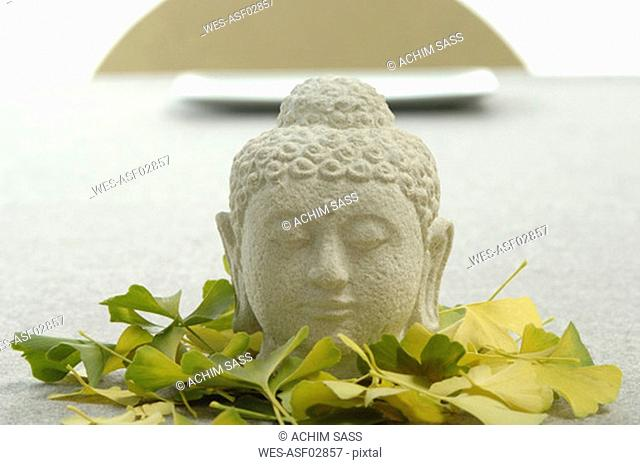Buddha head surrounded by ginkgo leaves