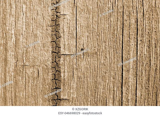 Wood texture brown, abstract