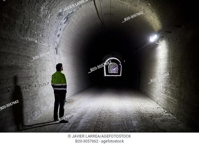 Somport Railway Tunnel, The Laboratorio Subterraneo de Canfranc (LSC) has been excavated in the rock 800 m deep under the Mount Tobazo in the Spanish side of...