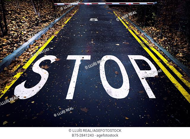 Stop sign painted on pavement and closed barrier in autumn road, with double no-parking yellow lines. Bankside, London, England