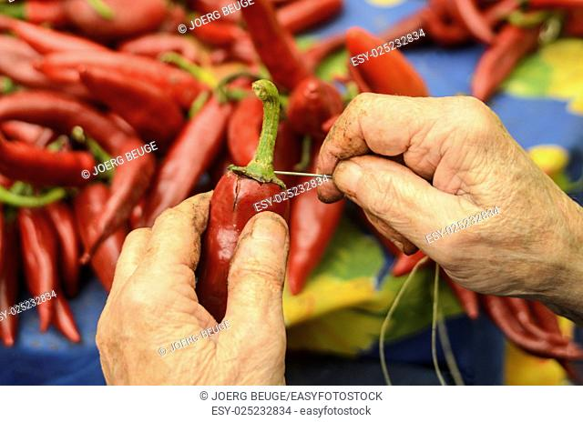 red paprika are line up with a needle on a thin ribbon to dry