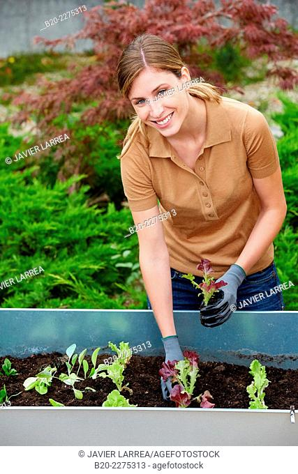 Woman planting urban orchard. Garden