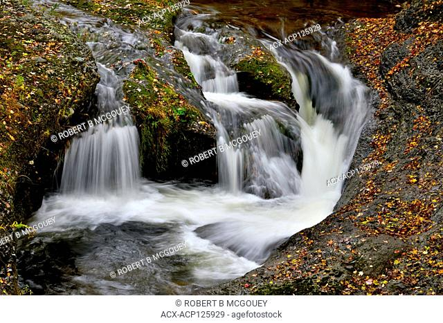Waterfall on a stream with its banks covered with fallen leaves in the autumn season in rural Sussex, New Brunswick, Canada