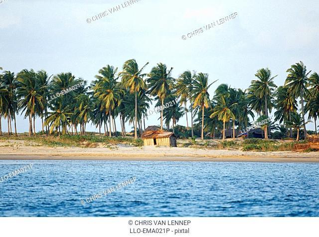 A Single Fishing Hut on the Beach  Ponta da Barra, Inhambane, Mozambique