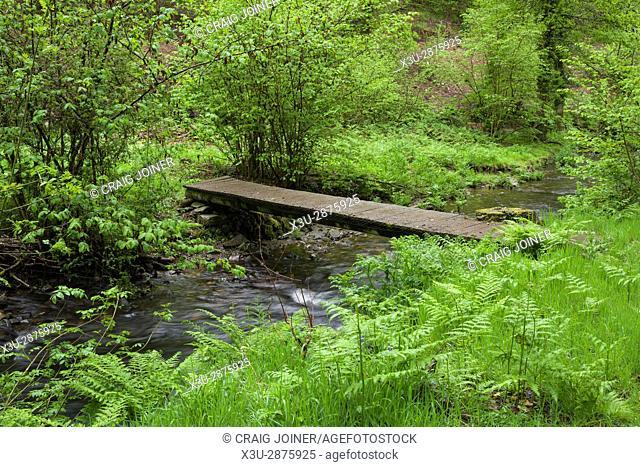 Footbridge over the River Haddeo in spring at Hartford Bottom, Exmoor National Park near Hartford, Somerset, England