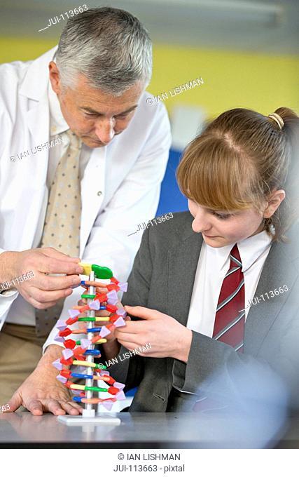 Science teacher helping high school student assembling helix DNA model