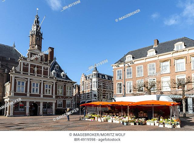 Town hall with church St. Bavokerk, flower stand Grote Markt, market place in Haarlem, province North Holland, Holland, Netherlands