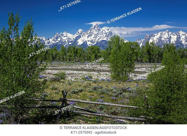 A rustic fence with meadow and mountains in the Grand Teton National Park, Wyoming, USA