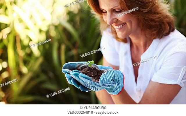 Eager female gardener holds up a small seedling and admires it