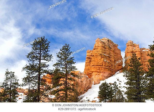 Hoodoos with winter snow, Bryce Canyon National Park, Utah, USA