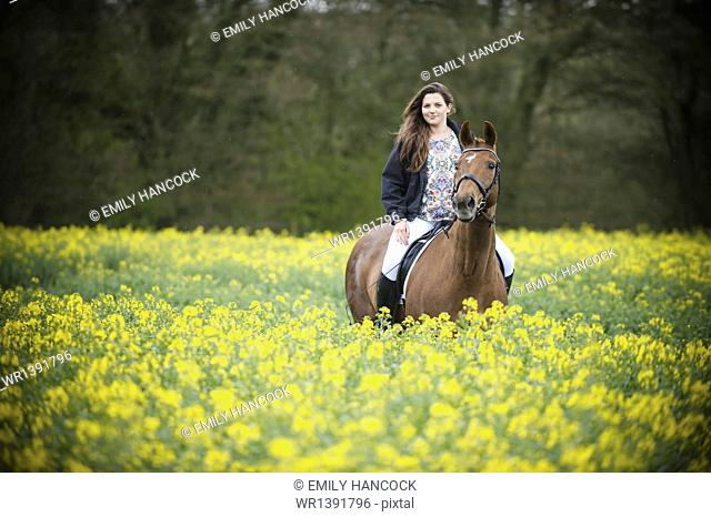 A woman riding on a brown horse through a flowering yellow mustard crop in a field