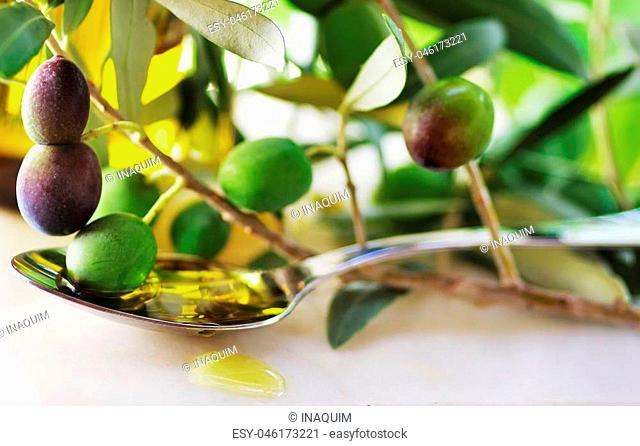 Oliveoil and olives on branch