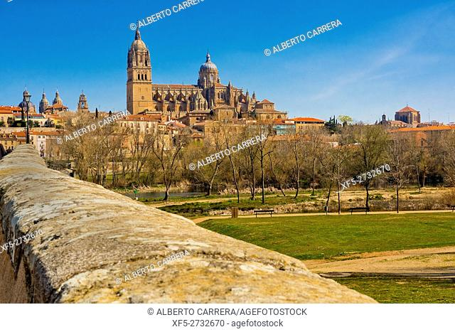 Roman Bridge of Salamanca, Historic Artistic Grouping, Puente Mayor del Tormes, New and Old Cathedral of Salamanca, Salamanca, UNESCO World Heritage Site