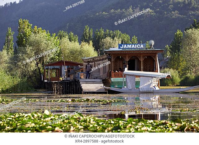 Dal Lake, Srinagar, Jammu and Kasmir, India