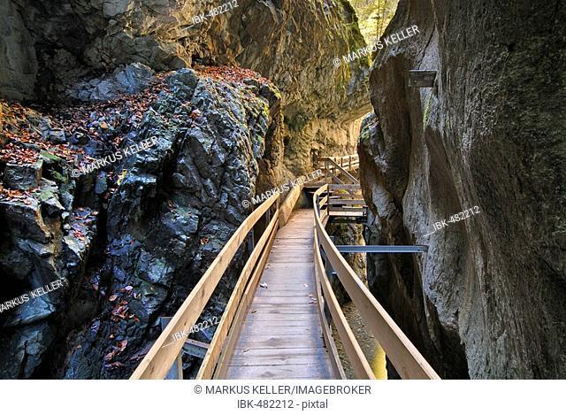 Footbridge in the Alploch canyon - Dornbirn, Vorarlberg, Austria, Europe
