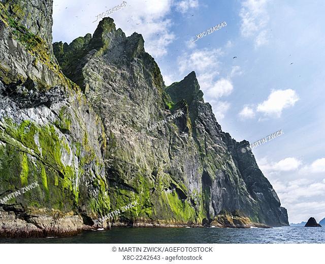 The islands of St Kilda archipelago in Scotland. Island of Boreray having the largest northern gannet (morus bassanus) colonies worldwide