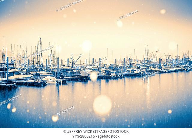 Big snowflakes falling over Thomsen Harbor in Sitka, Alaska, USA