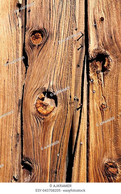 Old Wooden Wall with Nails Background