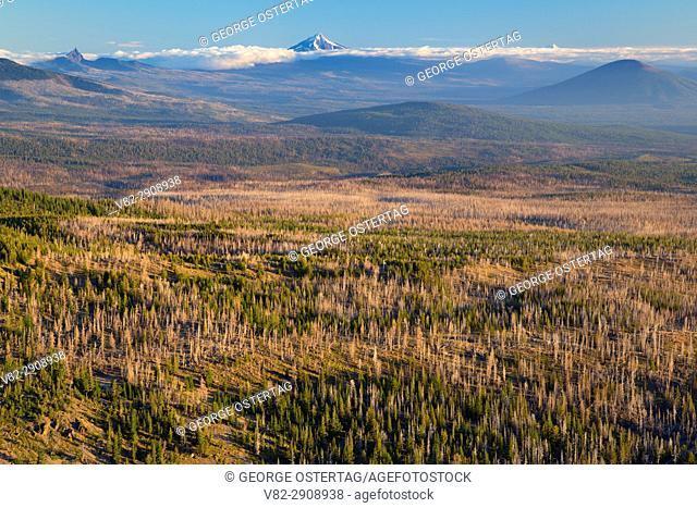 View to Mt Jefferson from Tam McArthur Rim Trail, Three Sisters Wilderness, Deschutes National Forest, Oregon