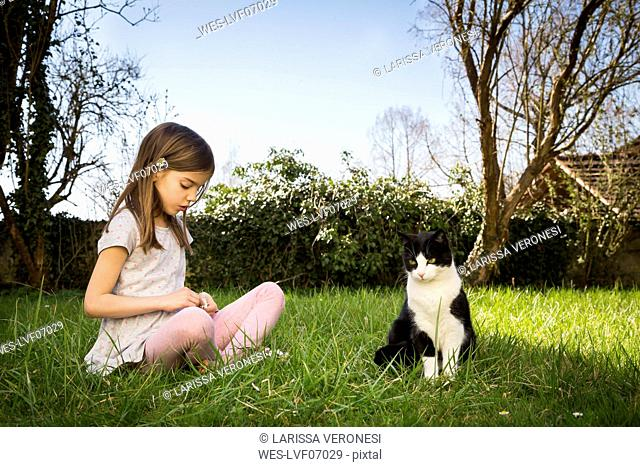 Little girl sitting on a meadow besides cat picking daisies