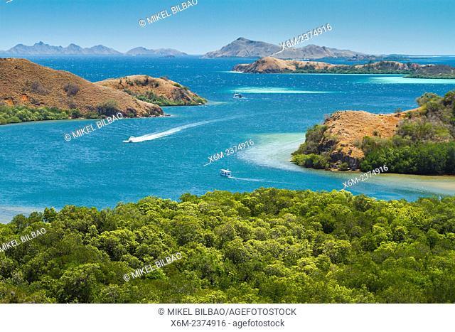 Rinca island. Komodo National Park. Indonesia, Asia