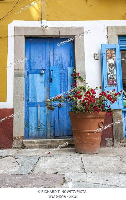 Blue door with red potted bougainvillea flower Guanajuato