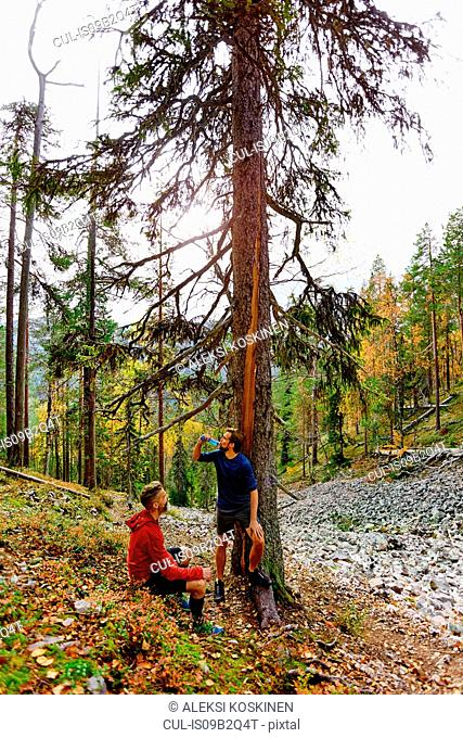 Hikers resting by tree in forest, Kesankitunturi, Lapland, Finland