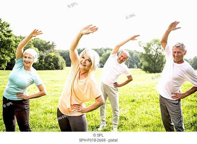 MODEL RELEASED. Four people in field exercising