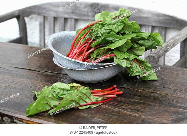 Red-stemmed chard in a tin bowl on a wooden table