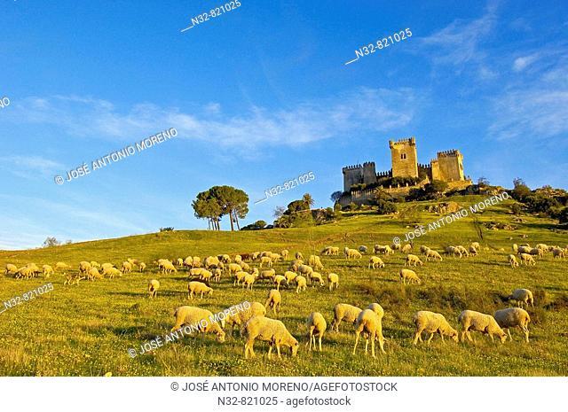 Castle of Almodóvar del Río Córdoba province, Andalusia Spain