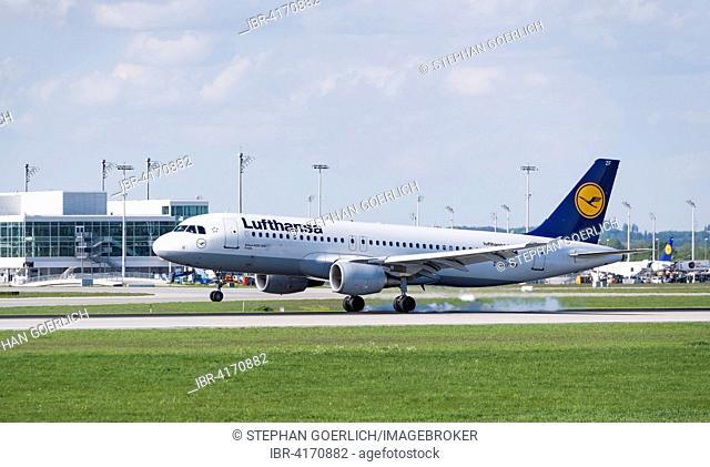 Lufthansa-Airbus Fulda, type A320-214, registration number D-AIZF, landing at Munich Airport, Munich, Upper Bavaria, Bavaria, Germany