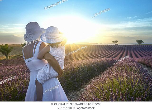 Valensole, Provence, France. Mother and gaudhter in the lavender fields at sunset