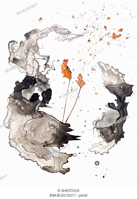 Watercolor shapes and dried leaves