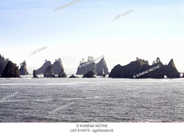 Sea Stacks on Shi Shi Beach, West Coast, Olympic Peninsula, Washington, USA