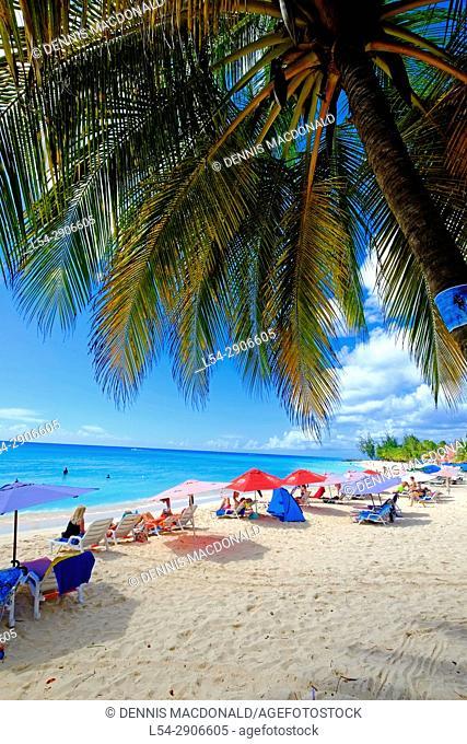 Bathsheba Bridgetown Barbados Southern Caribbean Cruise Celebrity cruise line