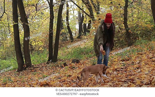 Dog and woman owner playing in autumn park