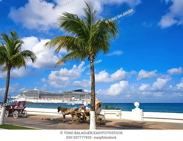 Cozumel island horse carriage and cruise in Riviera Maya of Mexico