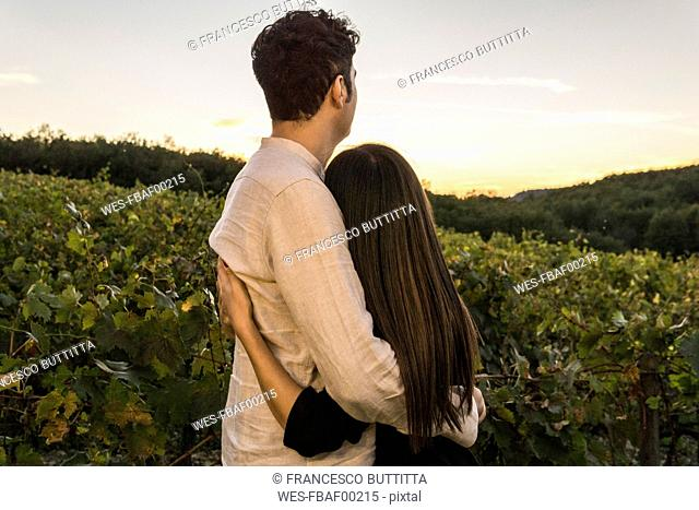 Italy, Tuscany, Siena, young couple embracing in a vineyard at sunset