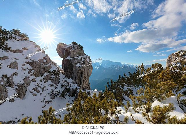 Europe, Italy, Veneto, Belluno, Agordino, Dolomites, Palazza Alta. Curious rock formation in the mountains between pristine snow and shrubs of mugo pine