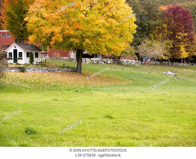 Westford fall. USA
