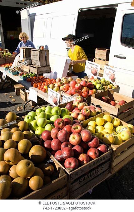 Washington DC, USA, Takoma Park Farmers Market, apple seller