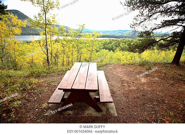 Park bench at Musreau Lake