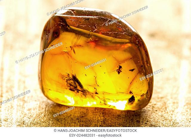Amber with embedded insects