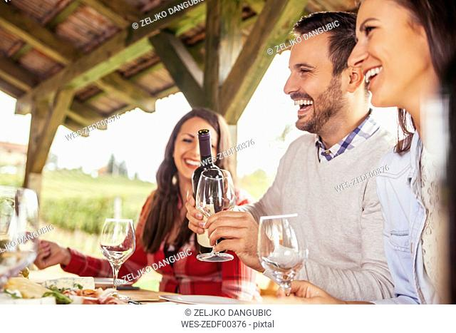 Friends socializing at outdoor table with red wine