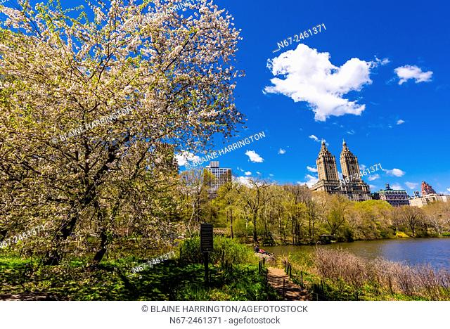 View of buildings along Central Park West seen from Central Park, New York, New York USA
