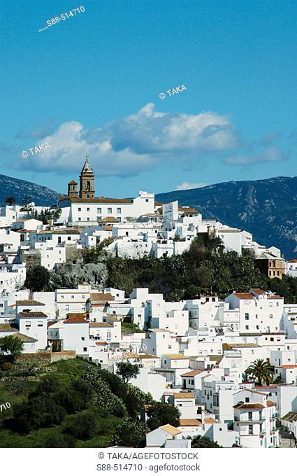 Alcalá de los Gazules. On top of the hill  Iglesia Mayor Parroquial de San Jorge. Cadiz province. Andalucia. Spain