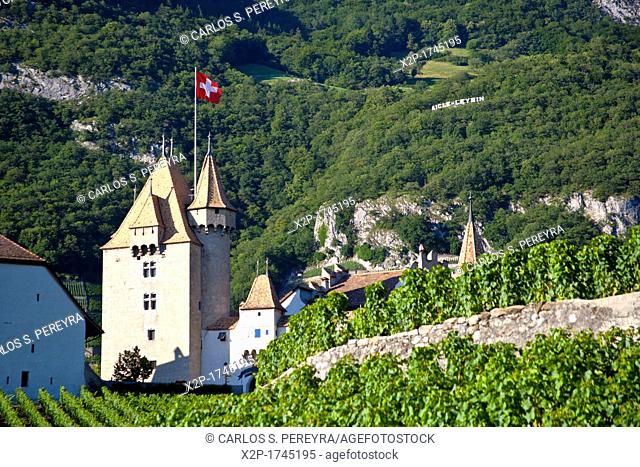 Chateau d'Aigle in the vineyards close to Lausanne, Kanton Waadt, Switzerland, Europe