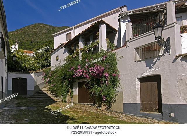 Urban view, Linares de la Sierra, Natural Park Sierra de Aracena y Picos de Aroche, Huelva province, Region of Andalusia, Spain, Europe