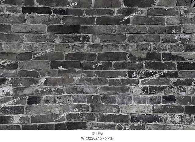 Brick Wall Culture Wall